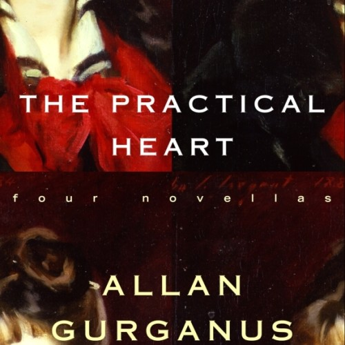 cover-allan-gurganus-the-practical-heart-four-novellas-book