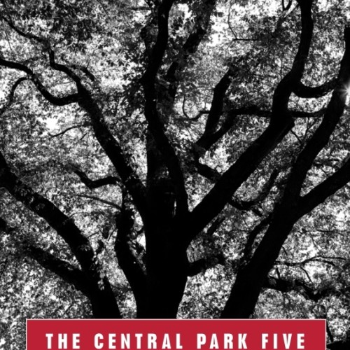cover-sarah-burns-the-central-park-five-chronicle-of-a-city-wilding-book