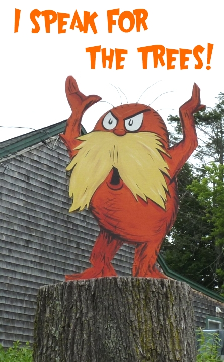 dr-seuss-the-lorax-speak-for-the-trees-book