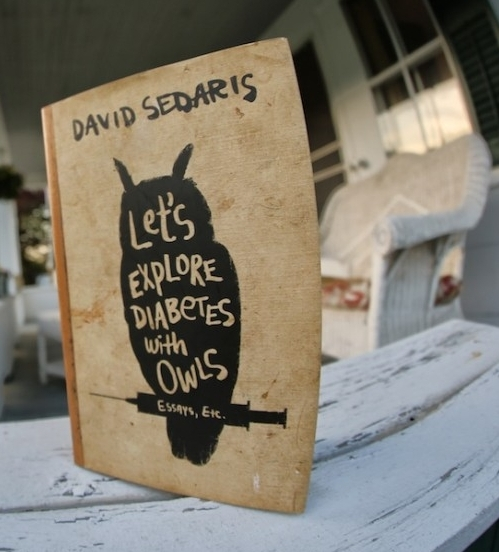David Sedaris Let's Explore Diabetes With Owls Book Cover